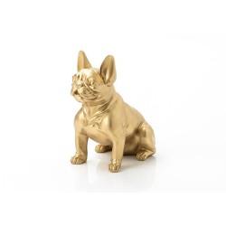 Bulldog français or